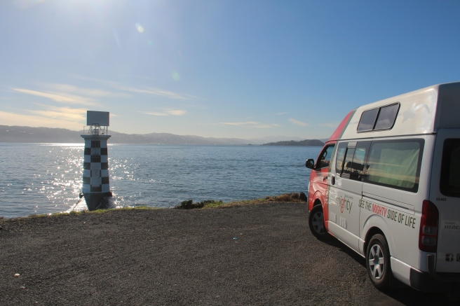 Our camper enjoying the view of Wellington!